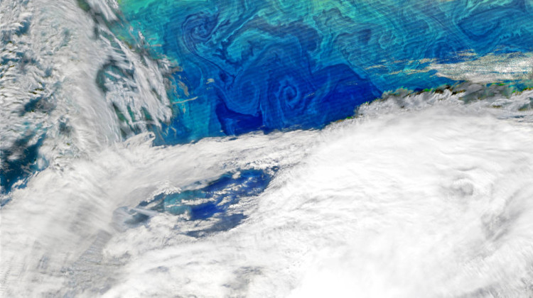 Phytoplankton in the North Atlantic